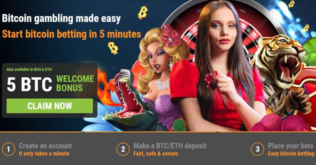 Slot Bitcoin Online Terbaik Tanpa Deposit Slot Bitcoin Gratis Uang Nyata Tanpa Setoran Profile Grupo Operacional Vespa Velutina Forum