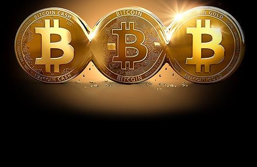 100 Chip Gratis Tanpa Deposit Bitcoin Kasino 100 Chip Gratis Tanpa Deposit Bitcoin Kasino Profile The Tourist Point Forum